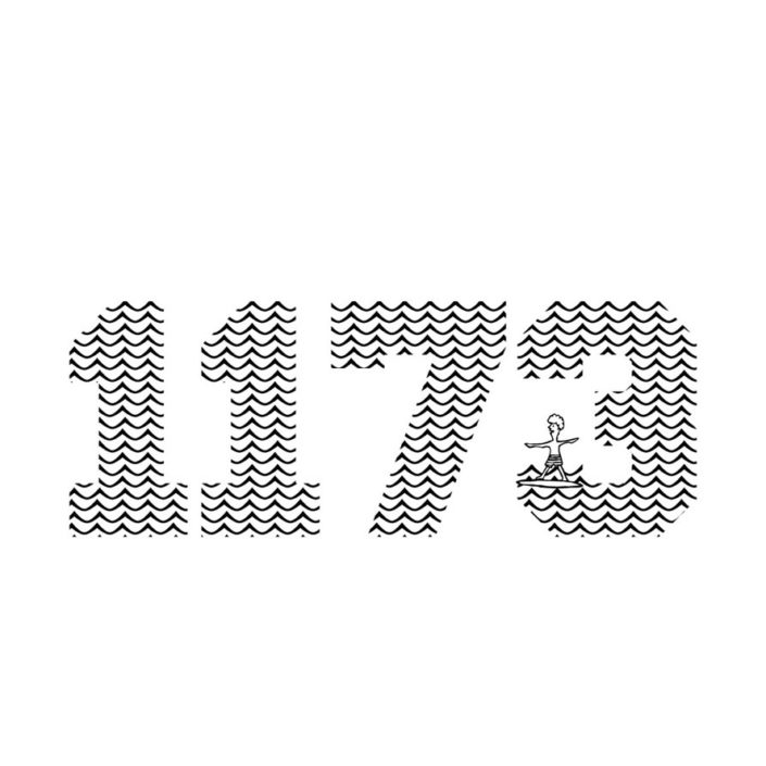 1173(W292mm / H109mm)